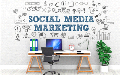 WEB e SOCIAL MEDIA MARKETING